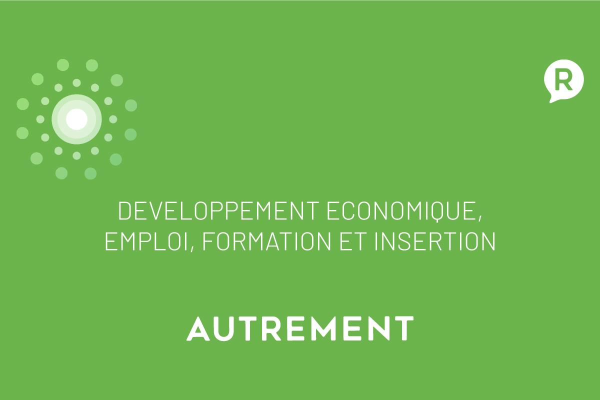Développement économique, Emploi, Formation et Insertion